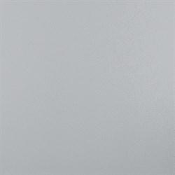 4562 Баллада серый