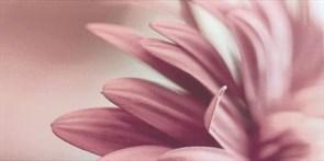 Sorenta bianco durst kwiaty A 30х60