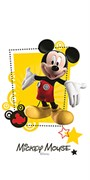 MICKEY FRIENDS R3060, 30x60