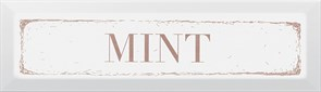 NT\C38\2882 Декор Mint карамель