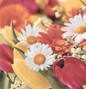 Brazil Deco Flowers 2 Панно из 3 плиток