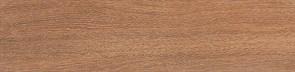 Вяз коричневый