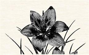Piano черн./09-03-04-081-1/ /96-46-04-8101/ Декор 40х25