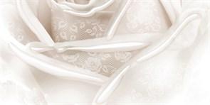 Нежность вставка В 10-05-11-350-2 25x50 Нефрит-керамика купить