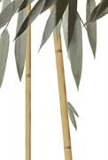 Бамбук ВС7БМ024 Декор 24,9х36,4
