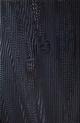 Агама черная Плитка настенная 06-01-04-156 20х30 (Питер)