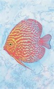 Декор Декор Красная Рыба