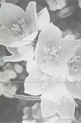Coll grey Панно (из 3-х пл.) 59,8х89,8