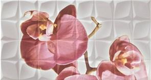 Dec. Orchid C Blanco BLN Декор 31,6x59,34