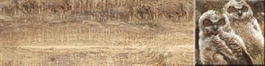 Дуб Декор 1 палевый 60х15,1