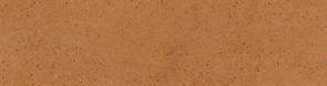 Керамогранит AQUARIUS Brown ELEW. 24,5x6,5
