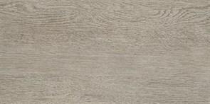 Alania grey Керамогранит 01 20х40