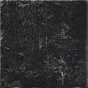 Pasha 50N LP